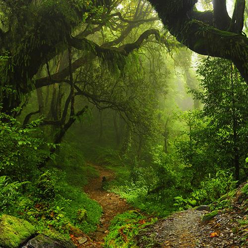 Erholsame Stunden in der Natur = Lebensqualität!