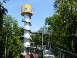 baumkronenpfad hainich Turm